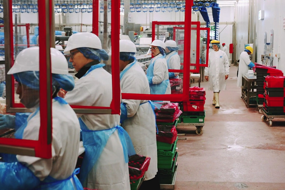 Risk of exposure to COVID-19 among meat and poultry processing workers